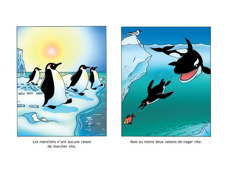 Extrait 2 : Les Manchots sont de sacrés pingouins !