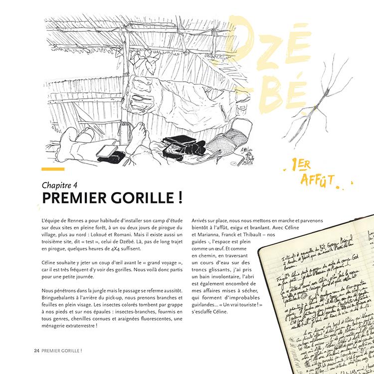 Extrait 2 : Des Gorilles et des hommes : [Carnet de voyage] naturaliste au Congo Brazzaville