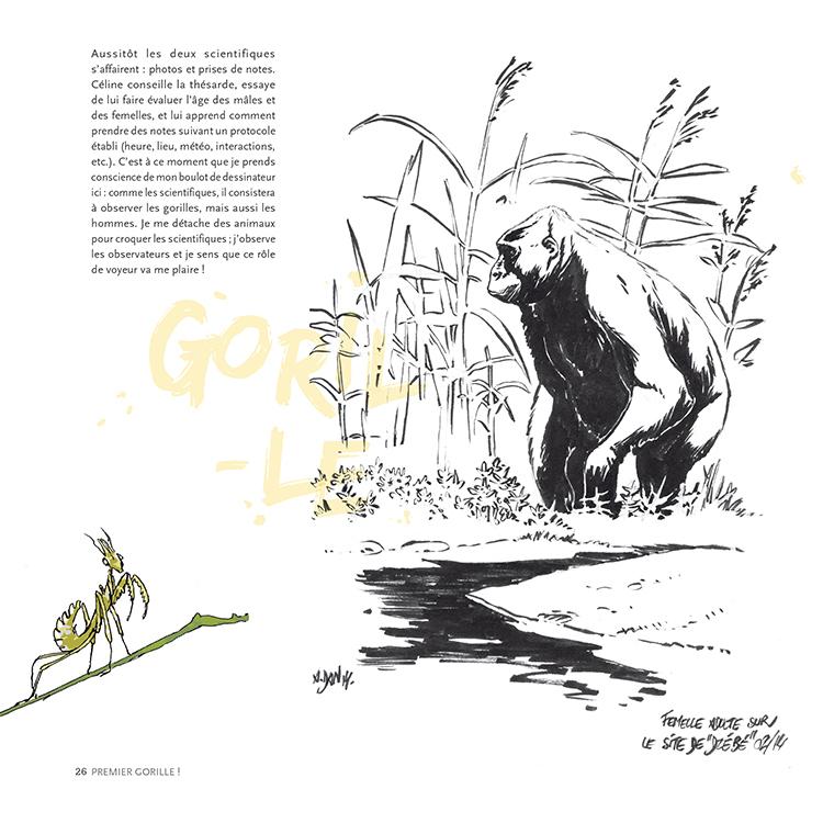Extrait 4 : Des Gorilles et des hommes : [Carnet de voyage] naturaliste au Congo Brazzaville