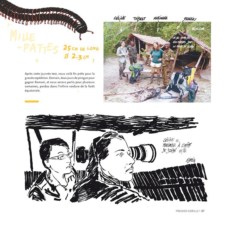 Extrait 5 : Des Gorilles et des hommes : [Carnet de voyage] naturaliste au Congo Brazzaville