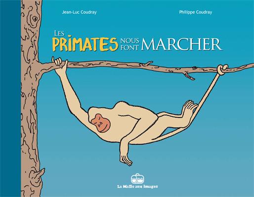 Les primates nous font marcher