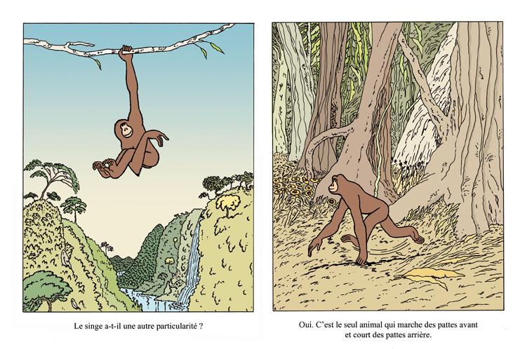 Extrait 4 : Les primates nous font marcher